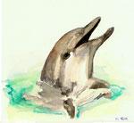 Mit Caran d'Ache Buntstiften ( Wasserverdünnbar) gezeichnet