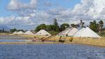 Marsala: Le sel est entreposé le long des marais