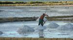 Marsala: Le récolte de sel se fait toujours manuellement