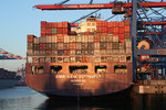 CMA CGM Butterfly