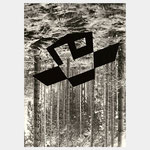 "Annette Hurst ""Immobilie"" Foto/Fotogramm"