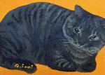 「額猫」 サイズ:ミニ(手のひらサイズ) 油彩