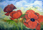 Acryl auf Leinwand ~ Klatschmohn auf dem Sommerfeld   ~  80 x 60 cm