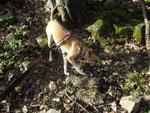 Lucy auf Entdeckungstour