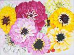 2016 Zinnia's I  verschillend getint  acrylverf op linnen    30 x 40 cm.    € 206,-