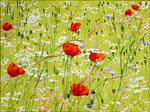 With each step a gentle wind blows, with each step a flower blooms: Thich Nhat Hanh geschilderd door Marian van Zomeren- van Heesewijk met acylverf op linnen 60 x 80 cm. Hoe meer ik waarneem, hoe meer vragen ik krijg.