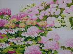 Pad tussen hortensia's Acrylverf op linnen 60 x 80 cm. € 950