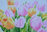 2015 Tulpen III   70 x 100 cm. acrylverf op linnen   € 1200,-