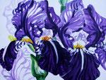 2002 Irissen acrylverf op paneel 60 x 80 cm. € 750,-
