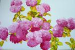 2012 Hortensia IV     Acrylverf op linnen 80 x 120 €1650