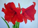 2000 Amaryllis Acryl op paneel 60 x 80  €750