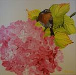 2014 Roodborst op hortensia. Acrylverf op doek 30 x 30 cm.    € 165,-