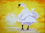 2014 Geniet als deze zwaan van een gloednieuwe dag. Acryl op linnen 80 x 60 cm.  € 1200,-