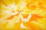 2012-2013  2 Duiven  Een fonkelnieuwe dag  vanuit mijn atelier aan de Tintlaan 96   80 x 120 cm. acrylverf op linnen € 1750,-
