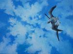 2011 Ganzen blijven vliegen II:  Het leven gaat voorbij aan het geroezemoes in de wereld. Acrylverf op paneel 60 x 80 cm. € 900