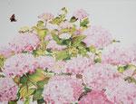 2015 Jonge merels in de hortensia Acrylverf op linnen 60 x 80 cm. € 950