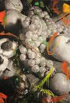 Früchte Stillleben (coloriert), 2010 Acrylfarbe auf Pigmentdruck auf Hahnemühle Photo Rag 308 g 120 x 85 cm (Gerahmt 145 x 109 cm)