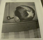"Man Ray ""Tonsure (Marcel Duchamp)"", 1921 gelatin silver print, printed later 35,5 x 27 cm"