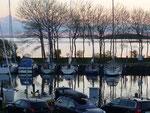 Scih spiegelnde Boote im Hafen Orth