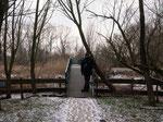 Brücke zum Weg durch das Auwaldgebiet