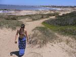 Bild: Strand mit Dünen