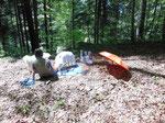18.05.2014 Picknick unter erschwerten Bedingungen