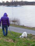 Riga passt in die Eingänge der Kanickellöcher ohne zu graben.