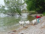 13.04.2014 Nach der Ausstellung tut ein Bad im Lago di Garda super gut.