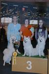 IHA Fribourg, 25.02.2012, 3.Platz Zuchtgruppe