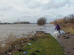 um das überschwemmte Rheinufer festzuhalten...