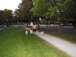 Im Park der Côte d'Or vor unserem Hotel