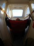 Dodo à bord