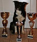 Das sind meine größten Pokale!! - 12.12.2009