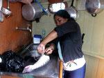 Rio Tefé-Reise 2010: Der Tigerspatelwels (Pseudoplatystoma fasciatum) gehört in Brasilien zu den beliebtesten  Speisefischen und wird täglich am Markt angeboten.