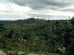 Dieses Schutzgebiet ist in den Jahren 1982, 1994, 1997 und 2000 abgebrannt. Die Brände sind immer von Holzfirmen gelegt worden. Vom Wald wurden 90 Prozent abgeholzt und zerstört.
