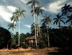 San Petro am Rio Ixito ist auch ein Indianerdorf.