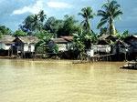 Die Häuser sind meistens auf Pfähle gebaut, da der Mahakam bei Hochwasser bis zu vier Meter steigt.