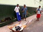 In Tefé wird das Filet vom Arapaima (Arapaima gigas) mitten im Ort täglich verkauft, obwohl es seit vielen Jahren verboten ist – niemand kümmert sich darum.