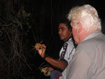 Rio Tefé-Reise 2010: Es gibt auch Süßwasserkrabben am Rio Tefé.