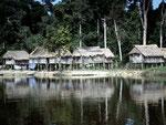Lameirao: ein Indiodorf der Mayoruna auf der brasilianischen Seite des Rio Javarí.