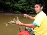 Rio Tefé-Reise 2010: Hier wieder Eduardo. Er ist heute mein bester Freund und Fahrer beim Fischfang 50 km in der Umgebung von Santa Cruz.