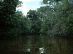 Bei unserer ersten Reise gab es noch große Bäume entlang des Flusses, die wurden inzwischen alle gefällt.