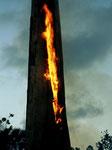 Wir konnten diesen Baum mehrere Tage beim Brennen beobachten.
