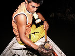 Eduardo kennt natürlich die Plätze, wo man Diskus finden kann. Mit seiner wasserdichten Taschenlampe treibt er die Fische in meinen kleinen Kescher. Jetzt lebt er vom Speisefischfang, darunter sind auch Buntbarsche und Großwelse.