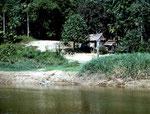 Buen Susesso ist ein Dorf der Yagua-Indios auf der peruanischen Seite des Rio Javarí.