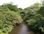 Am Oberlauf dieses Flusses werden wir drei Tage nach Fischen suchen, Streifzüge durch den Urwald machen und Campen.