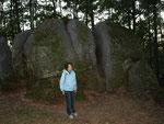Bei einer ersten Exkursion erfahren wir Wissenswertes über die Wackelsteine im Naturpark Blockheide.