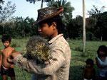 Ein Indianerjunge hat einen Greifstachler (Coendou) von Hand aufgezogen. Dieses scheue Baumtier läst sich nur von seiner Bezugsperson anfassen.