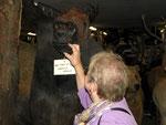 """Auch sonstige Tiersammlungen können """"hautnah"""" begutachtet werden."""