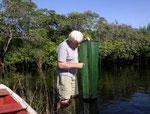 Durch den 1 Zentimeter breiten Spalt schwimmen die Fische in die Reuse und finden nicht mehr heraus.